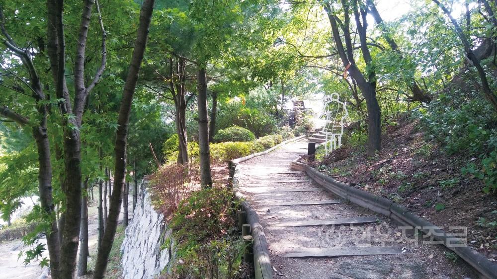 히_인왕산 숲길 6.jpg